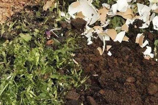 佛山危废处置有机类的废物有哪些方法
